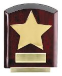 Star Dome Corporate Plaques Stand Achievement Awards