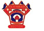 9-10 Yr. Old Section pin - 1.25 Little League Tournament Pins
